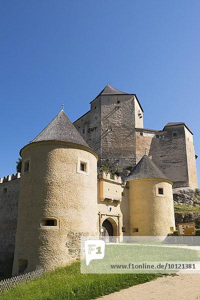 Burg Rappottenstein  Waldviertel  Niederösterreich  Österreich  Europa