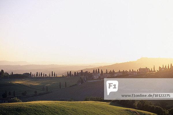 Landschaft mit Zypressenallee  Quirico d´Orcia  Toskana  Italien  Europa