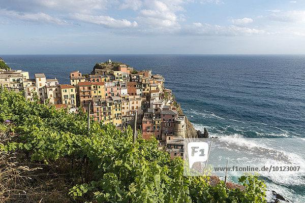Ortsansicht  UNESCO-Weltkulturerbe  Manarola  Nationalpark Cinque Terre  Ligurien  Italien  Europa