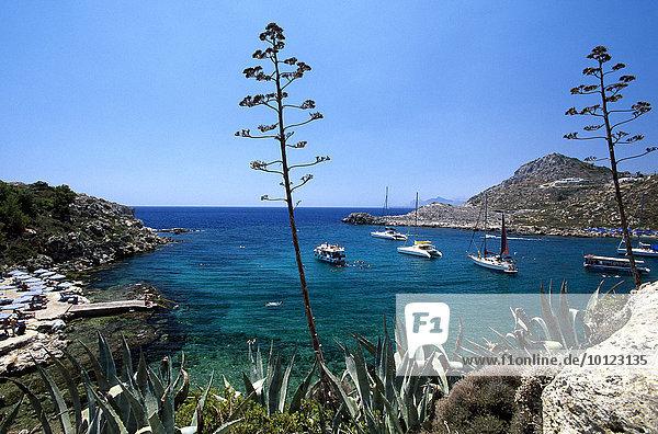 Blick in die Ladiko Bucht bei Faliraki  Rhodos  Dodekanes  Griechenland  Europa