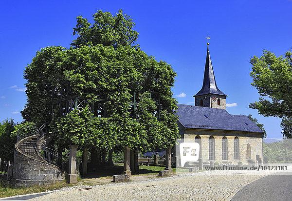 Tanzlinde und Kirche von Peesten  Landkreis Kulmbach  Oberfranken  Bayern  Deutschland  Europa