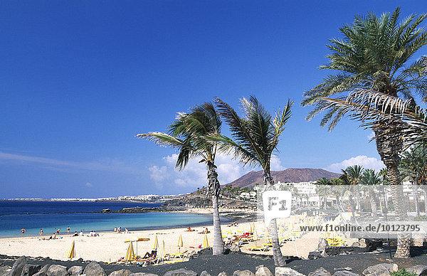 Playa Flamingo  Lanzarote  Kanarische Inseln  Spanien  Europa