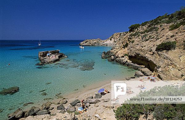 Strand an der Cala Tarida  Ibiza  Balearen  Spanien  Europa