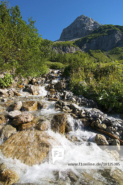 Auf dem Weg zum Prinz-Luitpold-Haus  Hintersteiner Tal  Bad Hindelang  Allgäu  Bayern  Deutschland  Europa