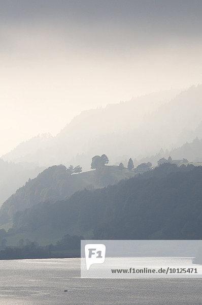 Großer Alpsee  Immenstadt  Allgäu  Bayern  Deutschland  Europa