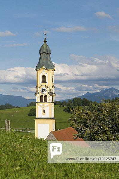Kirche im Ortsteil Berg  Pfronten im Allgäu  Bayern  Deutschland  Europa