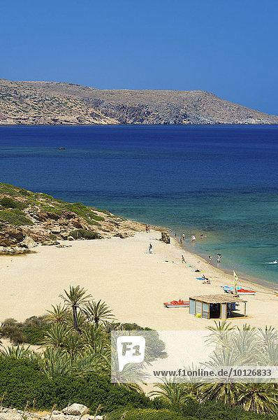 Palmenstrand Vai  Kreta  Griechenland  Europa