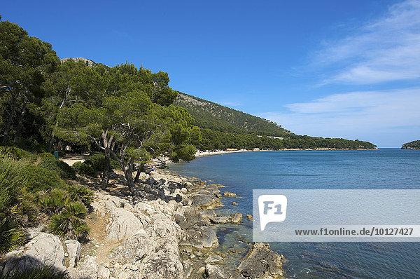 Strand Platja de Formentor  Cala Pi de la Posada  Mallorca  Balearen  Spanien  Europa