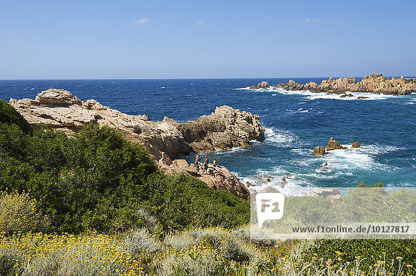 Küste am Capo Testa bei Santa Teresa Gallura  Sardinien  Italien  Europa