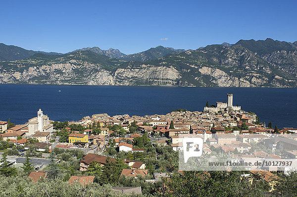 Stadtansicht von Malcesine am Gardasee  Malcesine  Gardasee  Italien  Europa