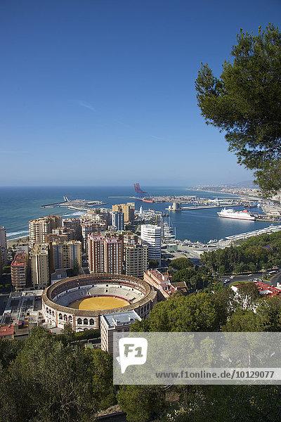Stierkampfarena  Malaga  Costa del Sol  Andalusien  Spanien  Europa