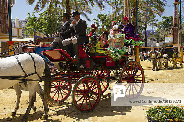 Kutschen auf der Feria del Caballo  Jerez de la Frontera  Andalusien  Spanien  Europa