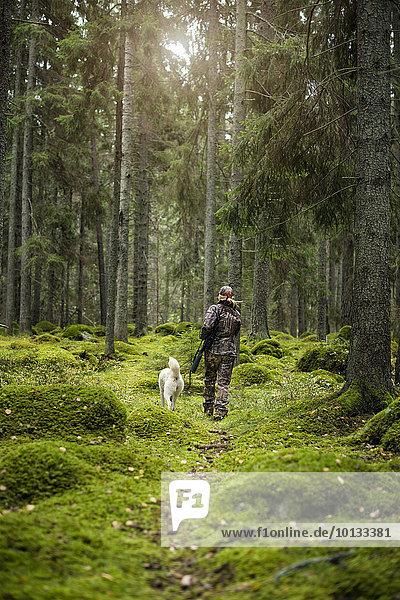 Frau Wald Hund Jagd