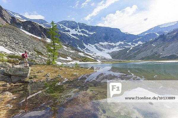 Frau beim Bergwandern  Karwassersee  Hohe Tauern Nationalpark  Lungau  Österreich  Europa