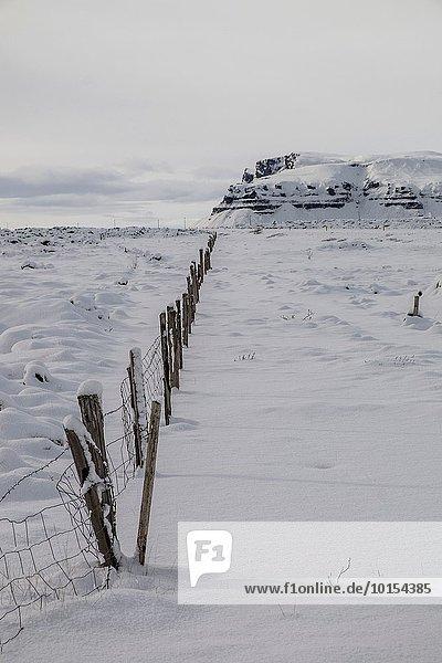 Myrdalsandur area  Southern Iceland.
