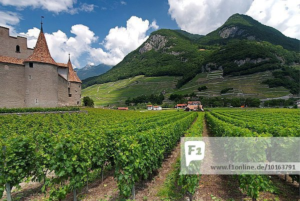 Europe   Switzerland  Canton Vaud  Chablais  Ch?teau d?Aigle surrounded by vineyards  Aigle (Eagle in English)  Swiss Inventory of Cultural Property of National and Regional Significance