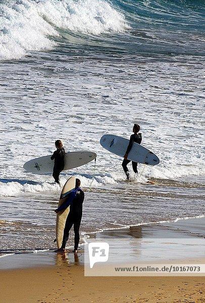Wasser Kitesurfer reinkommen Europa Landschaft Strand Ozean Küste Atlantischer Ozean Atlantik Portugal Sagres