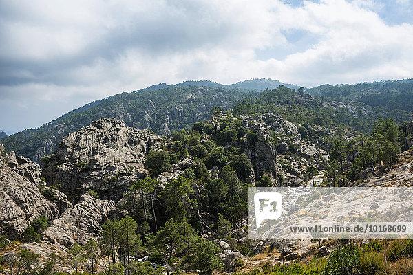 Berglandschaft  L?Ospédale  Alta Rocca  Korsika  Frankreich  Europa