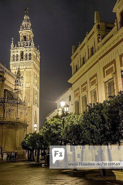 Nacht Andalusien Sevilla Spanien