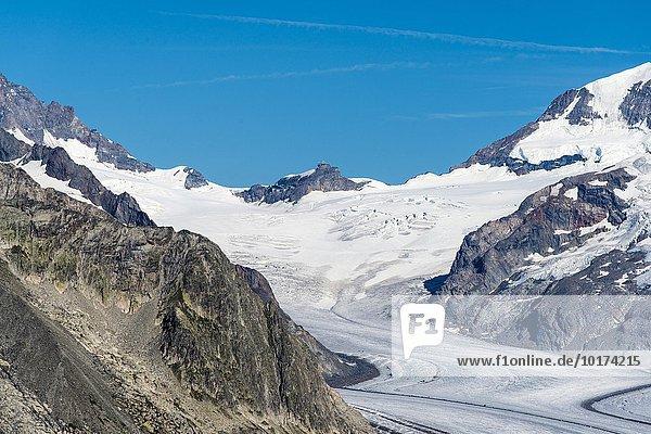 Jungfraujoch im Sommer  Südseite  und grosser Aletschgletscher  Ausblick von Eggishorn Bergstation  Wallis  Schweiz  Europa