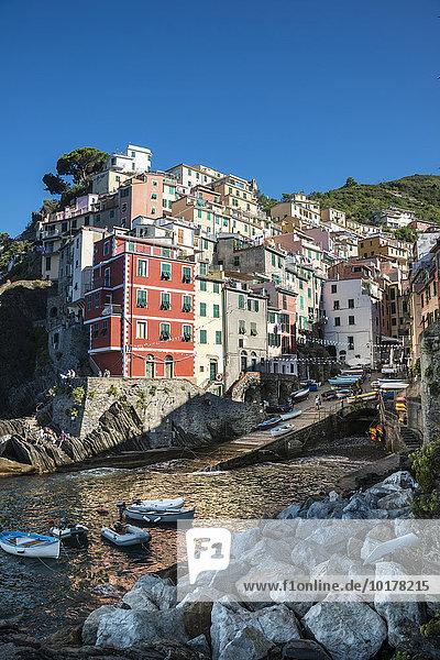 Ortsansicht mit Hafen und bunten Häusern  Riomaggiore  Cinque Terre  La Spezia  Ligurien  Italien  Europa