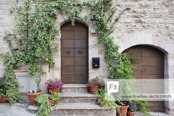 Blumengeschmücktes Haus  Spello  Umbrien  Italien  Europa