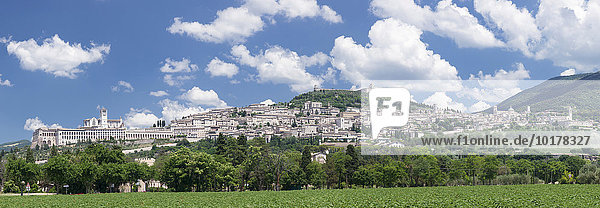 Assisi mit Basilika San Francesco und der Festung Rocca Maggiore  UNESCO Weltkulturerbe  Provinz Perugia  Umbrien  Italien  Europa