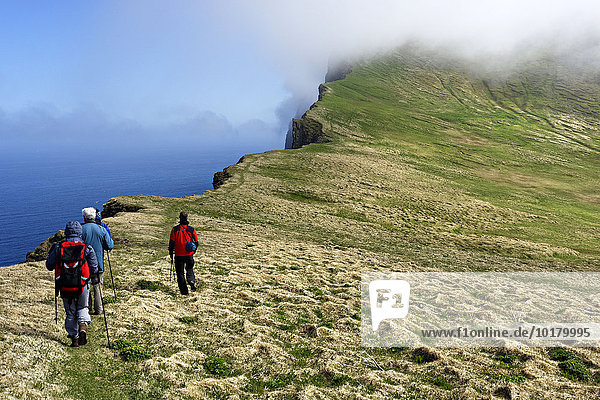 Hikers walking on the Hombjarg bird cliffs  Hornstrandir Nature Reserve  Westfjords  Iceland  Europe
