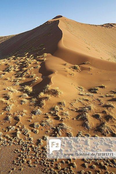 Luftbild  grasbewachsene Sanddüne am Rande der Namib-Wüste  Namib-Naukluft-Nationalpark  Namibia  Afrika