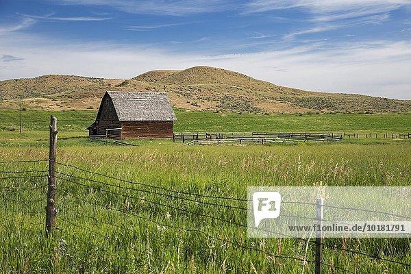Colorado ranch  Axial  Colorado  USA  North America