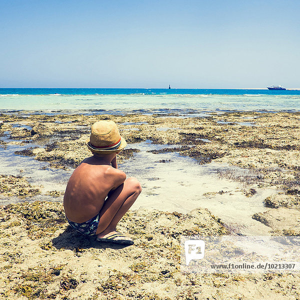 Strand Junge - Person Forschung Gezeiten