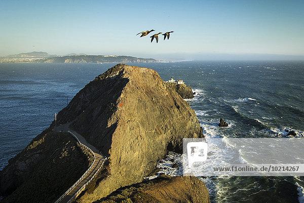 hoch oben fliegen fliegt fliegend Flug Flüge Vereinigte Staaten von Amerika USA über Ansicht Flachwinkelansicht Gans Winkel Kalifornien