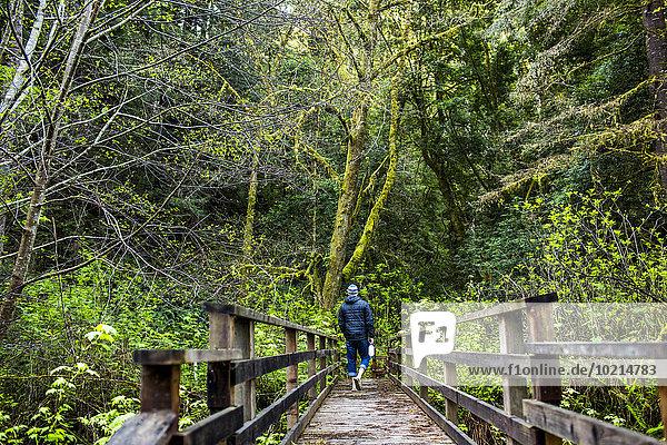 Europäer gehen Wald wandern Holzbrücke