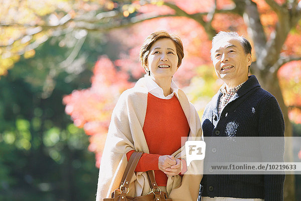 Senior Japanese couple relaxing in a traditional park in Autumn