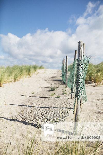 Deutschland  Mecklenburg-Vorpommern  Warnemünde  Stranddüne und Zaun