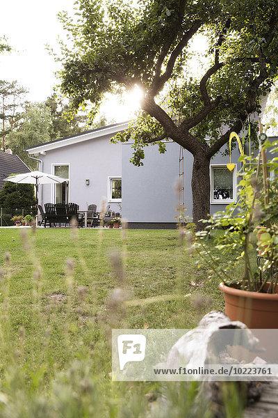 Deutschland  Eggersdorf  Bungalow und Garten
