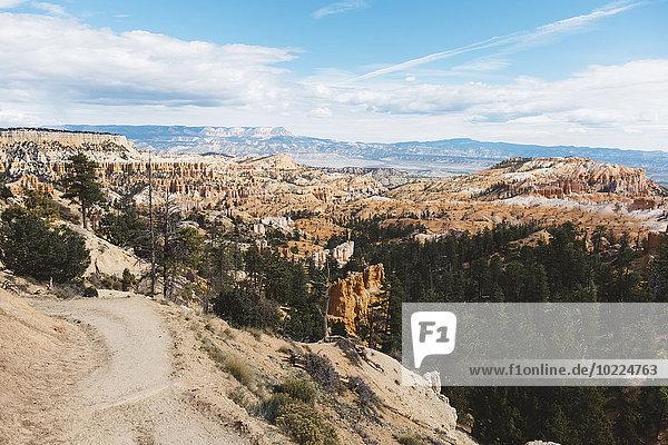USA  Utah  Bryce Canyon Nationalpark