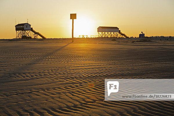 Deutschland  St. Peter-Ording  Pfahlbauten am Strand bei Gegenlicht