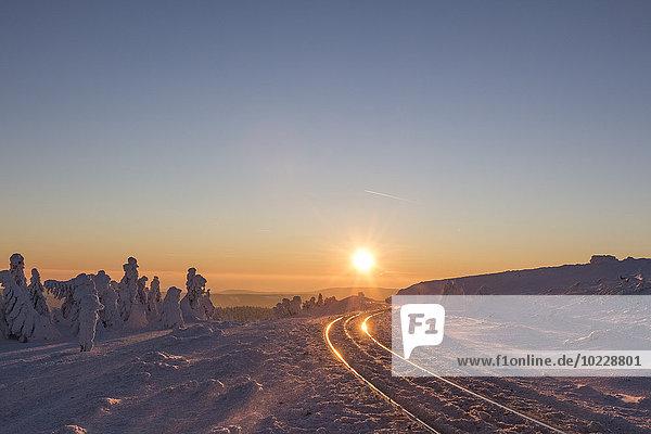 Deutschland  Sachsen-Anhalt  Nationalpark Harz  Brocken  Gleise der Harzer Schmalspurbahn im Winter gegen die Abendsonne