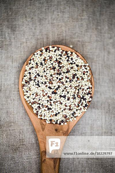 Holzlöffel aus dreifarbigem Bio-Quinoa