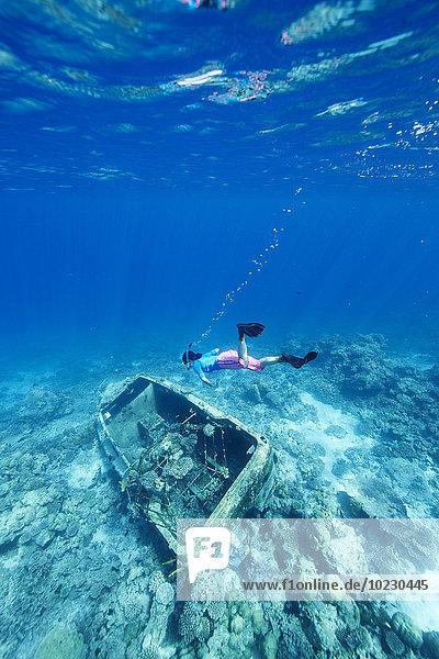 Malediven  Frau beim Schnorcheln im Indischen Ozean am versunkenen Boot