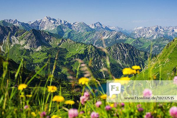 Deutschland  Bayern  Allgäuer Alpen  Blick vom Zeigersattel auf den Seealpsee Deutschland, Bayern, Allgäuer Alpen, Blick vom Zeigersattel auf den Seealpsee