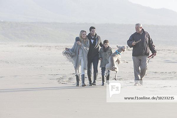 Südafrika  Kapstadt  Familienspaziergang am Strand mit Hund