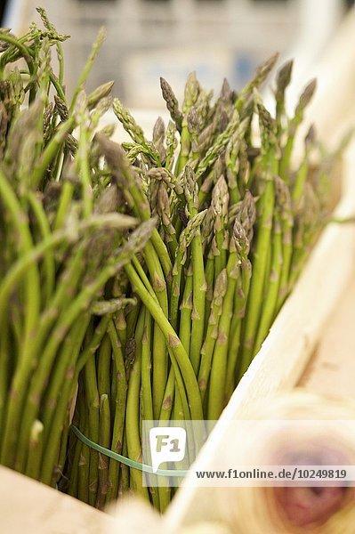 Blumenmarkt grün Spargel Markt