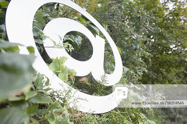 Beim Symbol am Baum im Wald