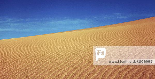 Sanddüne in der Taklimakan-Wüste  Provinz Xinjiang  China