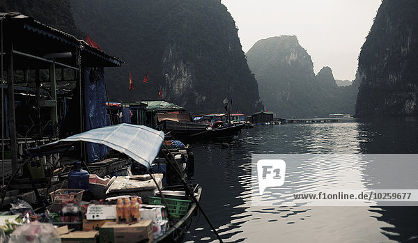 Marktboote in der Halong Bucht  Vietnam