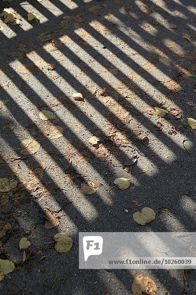 Schatten des Geländers auf unordentlicher Straße