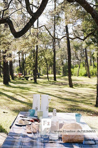 Frühstück auf dem Tisch im Wald serviert