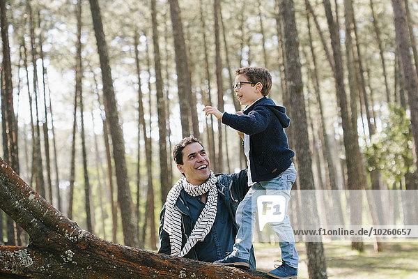 Glücklicher Vater hilft dem Sohn beim Baumklettern im Wald